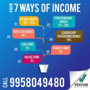 7 ways of Income in Vestige